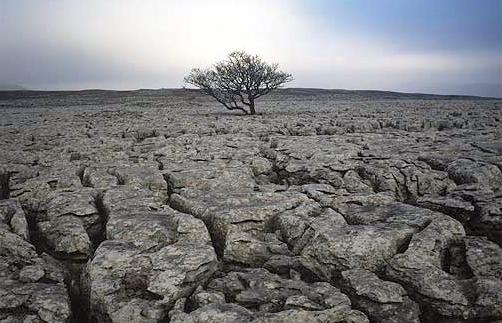 Эрозия почвы. Уменьшение содержания йода в почве и воде. Йододефицит